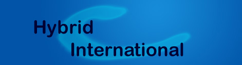 hybrid international logo